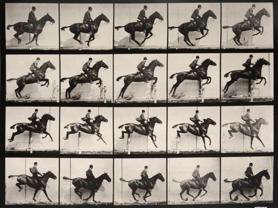 这张鼎鼎大名的照片展现了马在奔跑时的运动姿态