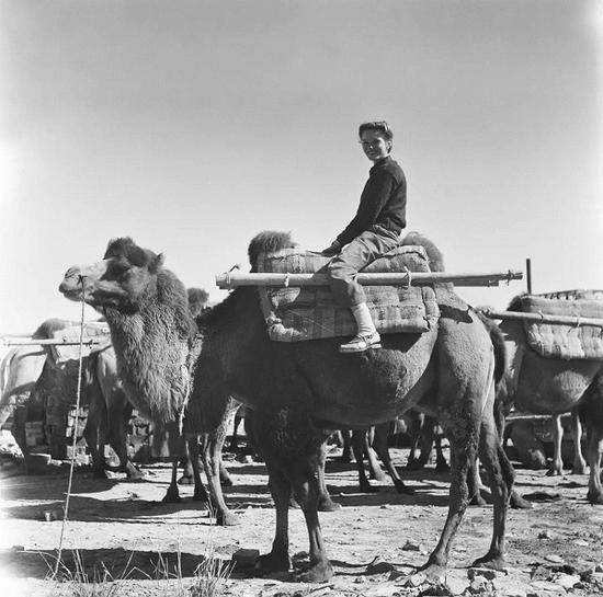 她骑骆驼走完了剩下的路程