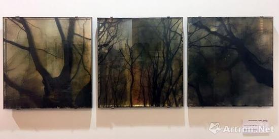 卡别耶拉·莫拉为兹 Trees from a Past 1998-2016 42x40cm 独版