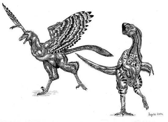 他绘制的不同世纪的动物,