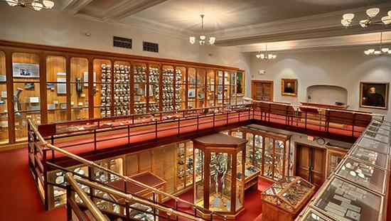 穆特博物馆内景,样样展品都特别耐看(楼梯下为是北美最高个儿)