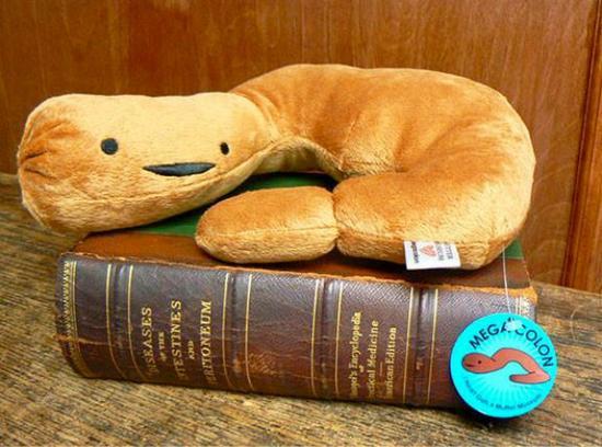 穆特博物馆商店的幽默和恶趣味: 结肠毛绒玩具