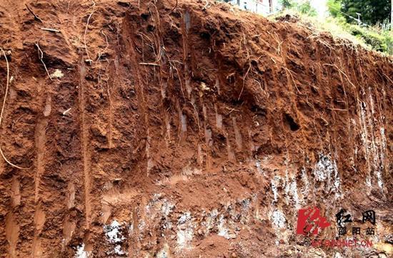 回龙村挖掘现场。