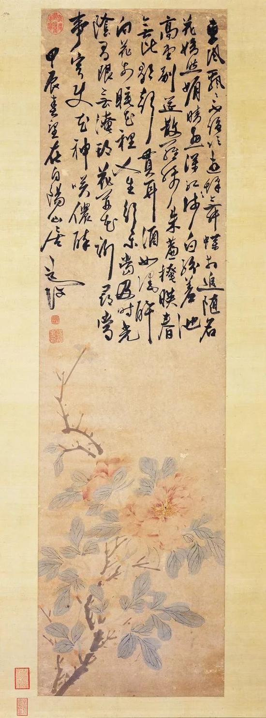 陈淳,《牡丹图》