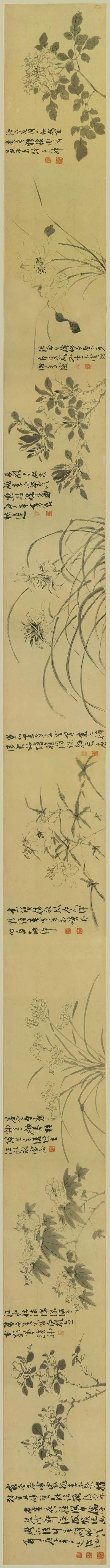 陈淳,《花卉图》卷,纸本墨笔,天津博物馆藏