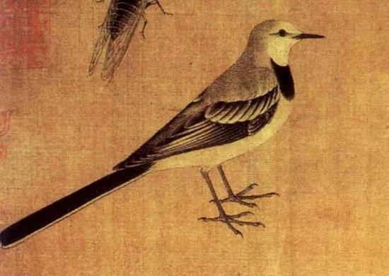 """与写意花鸟画相对的是工笔花鸟画,工笔画又称为""""细笔画"""",以精谨"""