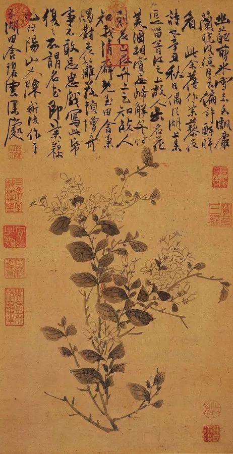 陈淳,《茉莉》,台北故宫博物院藏