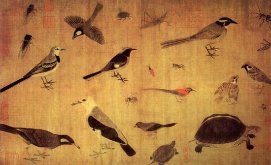 黄筌,《写生珍禽图》卷,五代,绢本,设色,纵41.5cm,横70.8cm,故宫博物院藏