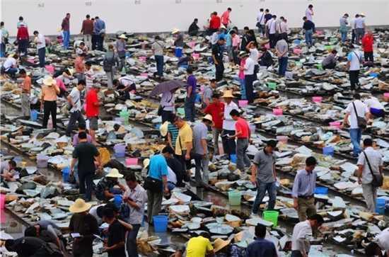 """在盈江县城,几乎家家户户都有玉石毛料,人人都会鉴赏美玉。但""""赌石""""却不是人人都能拿捏得好。"""