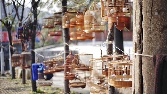 北闸口之于郑州,就像夫子庙之于南京,潘家园之于北京,带着时代或新或旧的印记,每周末准时开放。