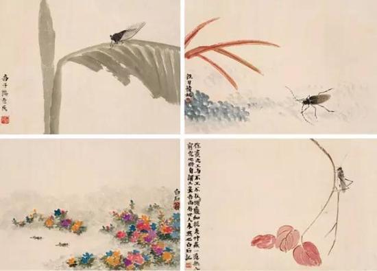 花卉草虫 册页