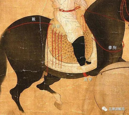 固定马鞍的三条带子分别称为攀胸、韅(音显)和鞦(音秋),韅即腹带