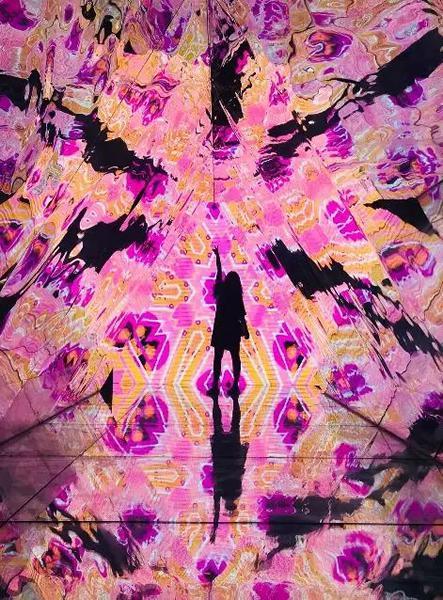 """上海""""平行世界2.0非人物语""""展览"""