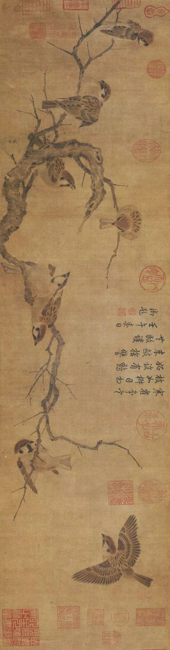 ▲ 《寒雀图图卷》 崔白 23.5 × 101.4 cm 北京故宫博物院藏