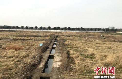 资料图:扬州桑树脚地块考古工地现场。 崔佳明 摄