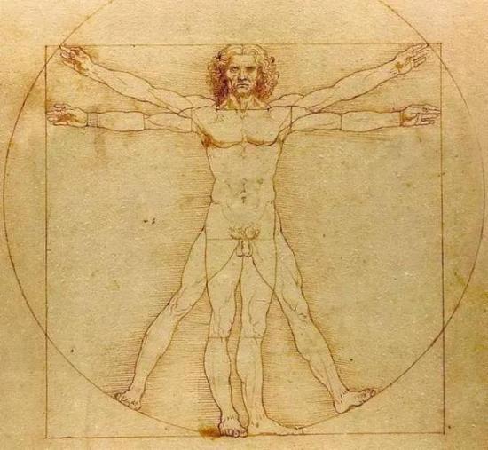图四:达芬奇《维特鲁威人》,学院美术馆。对称性。
