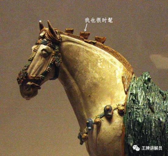 三花三彩马,唐代,中国国家博物馆藏