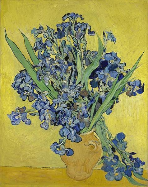 Irises,1890,Vincent van Gogh,梵高博物馆藏
