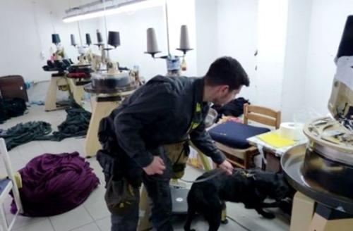 意大利警察携带警犬检查华人工厂。来源:欧联网