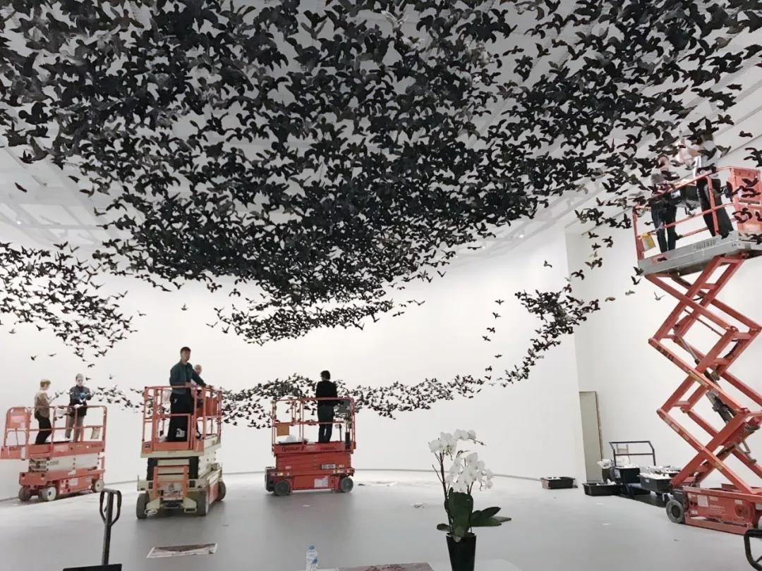 《鳥云》艱辛布展現場,2019,維多利亞州國立美術館 攝影:蔡國強