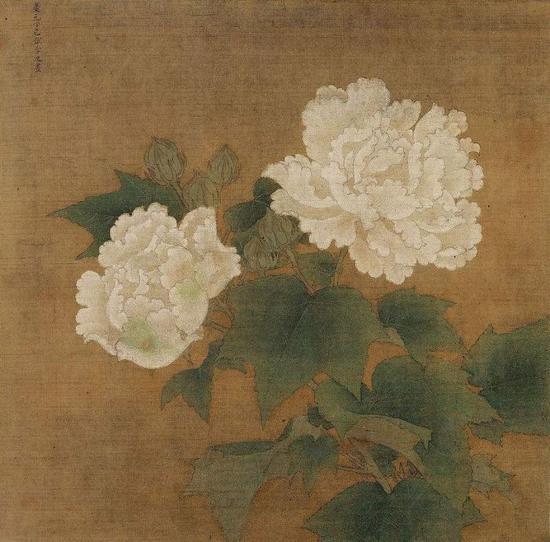 《红白芙蓉图》之白芙蓉 李迪 东京国立博物馆藏