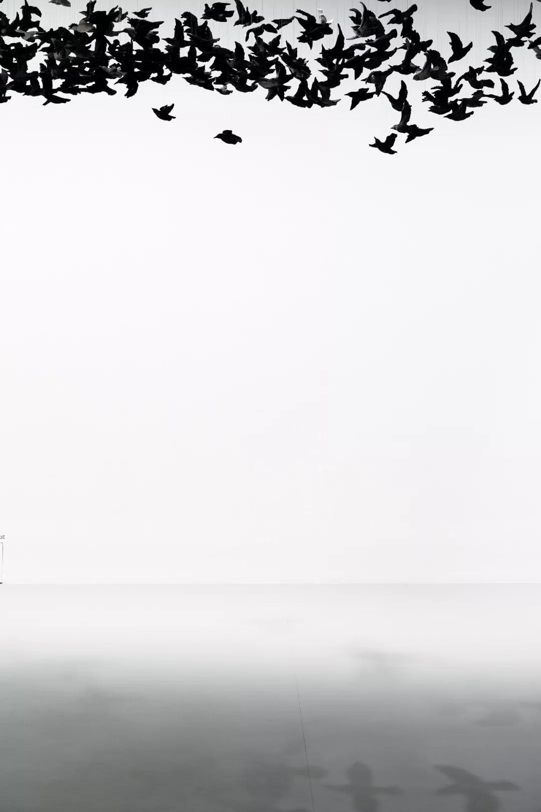 《鳥云》裝置,2019,維多利亞州國立美術館   攝影:Tobias Titz