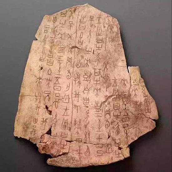 ▲武丁时期(约公元前13世纪)的甲骨