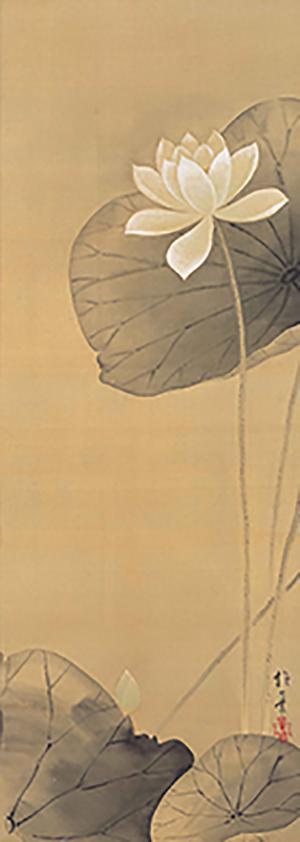 酒井抱一画 白莲图 江户时代(19世纪) 京都细见美术馆藏