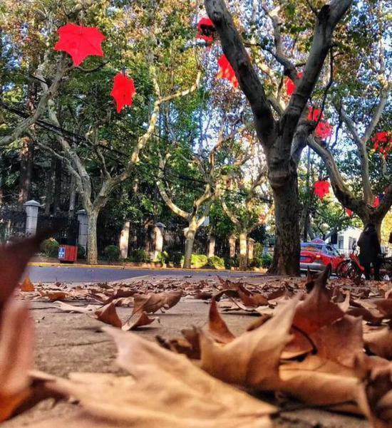 上海复兴西路的红叶装置(目前已拆除)