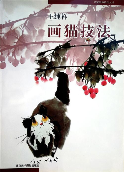 王纯祥教材(2004)国家计划出版书藉