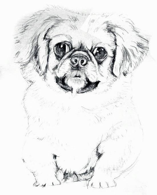陈佩秋,《八犬图底稿》