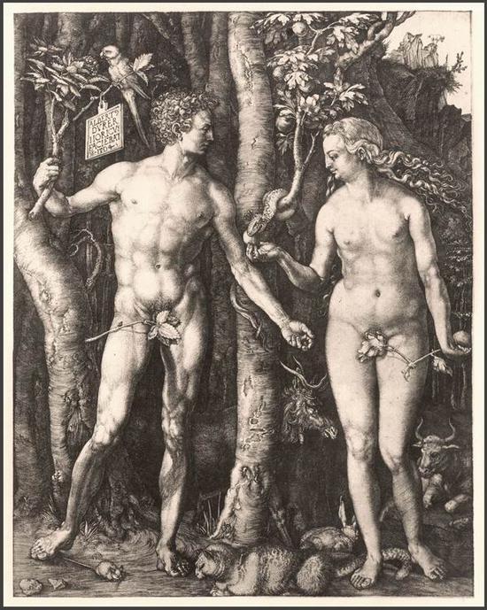 丢勒《亚当与夏娃》,线刻铜版画,1504年