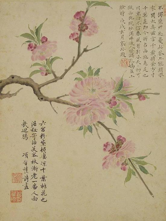 明 项圣谟《花卉图册》