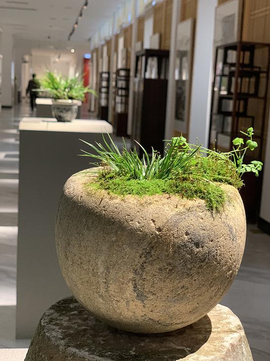 展览由上海龙现代美术馆和绍兴张桂铭艺术馆合作推出。
