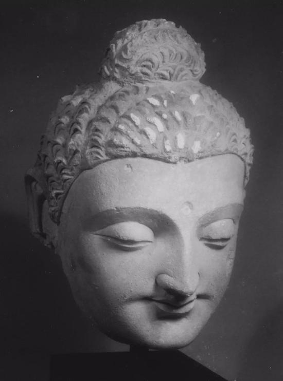 犍陀罗风格的佛头,4-5世纪,美国大都会艺术博物馆藏