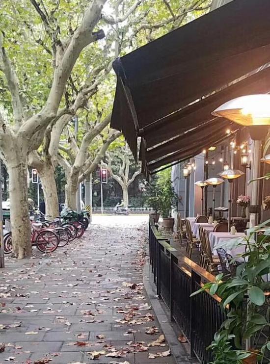 上海历史街区落叶