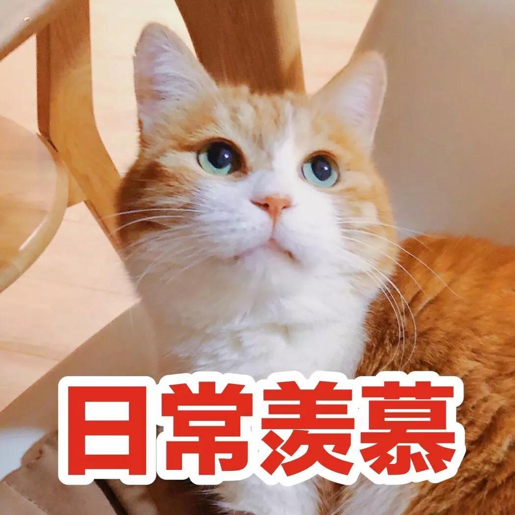 """唐人春游,喜欢吃吃喝喝,并且吃出了不少著名的""""游宴""""。"""