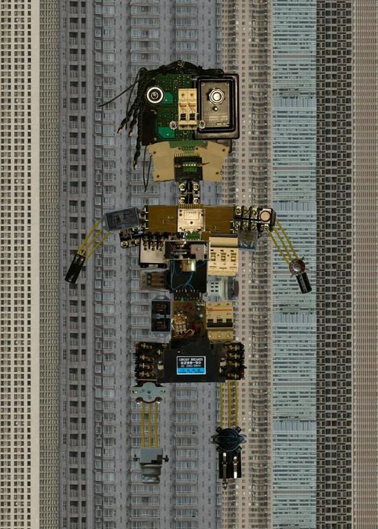 """刘晓溪《数字时代的同化危机1》57.15x80cm 数码照片(""""青艺?视界""""板块)"""
