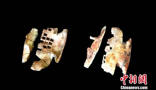 出土的卜甲。陕西省考古研究院供图