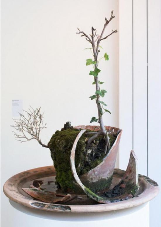 米歇尔-布拉齐的作品,总是呈现着自然的力量。