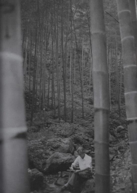 画境与文心:吴冠中笔下的风景