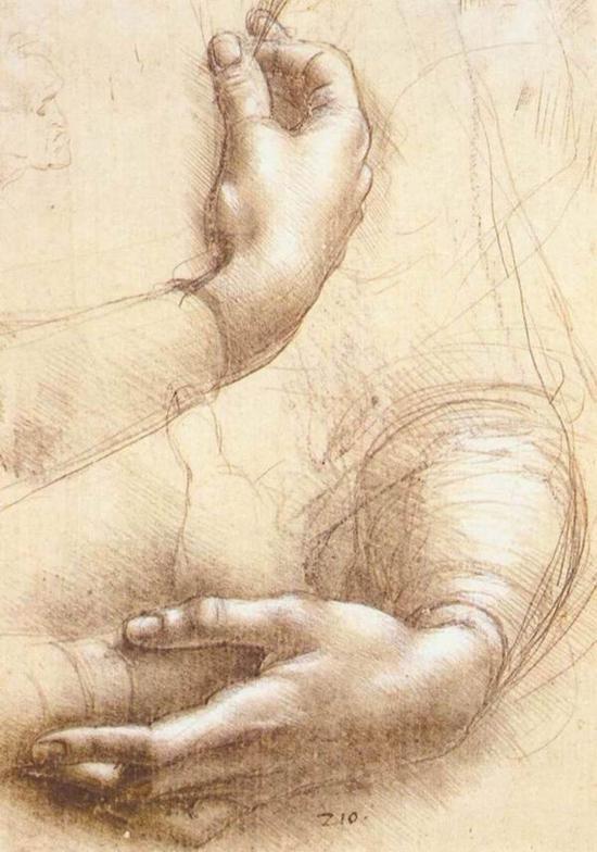 达芬奇《手部》,素描