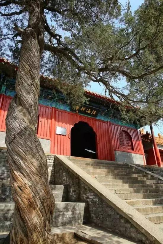 法海禅寺,深藏山中
