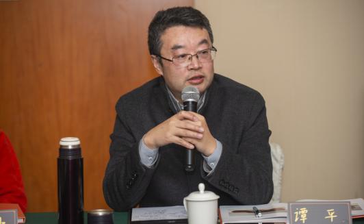 中国文物交流中心主任谭平先生发言
