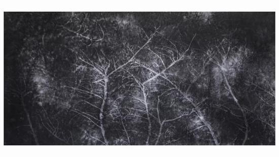 张明明 《废墟》系列 宣纸水墨 248x129cm 2018
