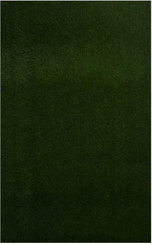 fake grass,160x100cm,人造草皮,有机玻璃artificial grass,plexiglass,2017