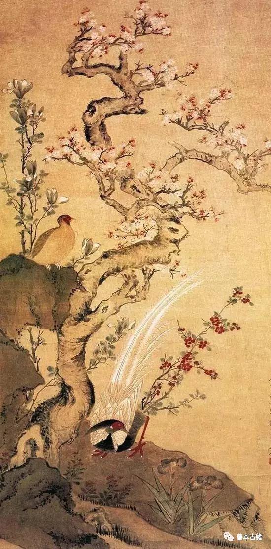 明 周之冕 《杏花锦鸡图》