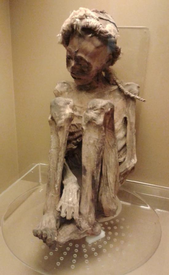 ▲巴西国家博物馆内一名智利男子的木乃伊