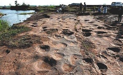侏罗纪猜想证实山东郯城县发现300个恐龙足迹