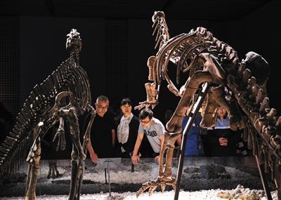 南京博物院,观众在参观展出的恐龙化石。图/视觉中国